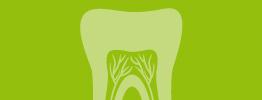 Logo Endodoncia